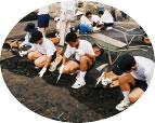 遺跡の発掘体験